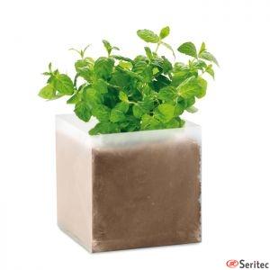 Bolsa semillas de menta personalizada