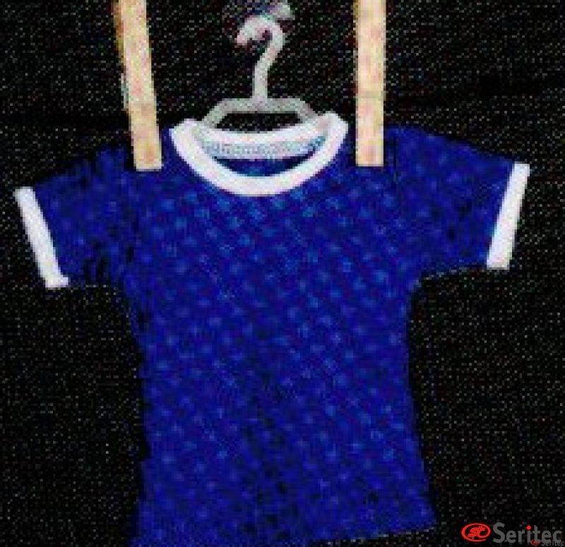 Mini Camiseta Personalizble